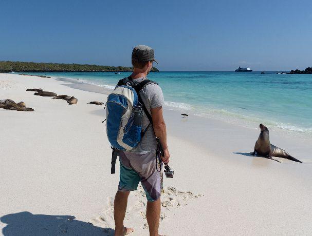 when to visit galapagos