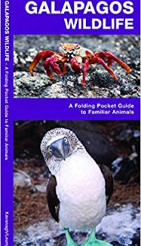 galapagos animals pocket guide