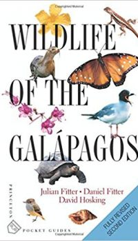 wild life of the galapagos
