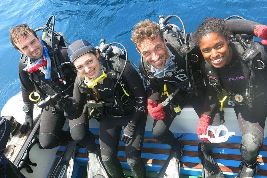 dive in Galapagos