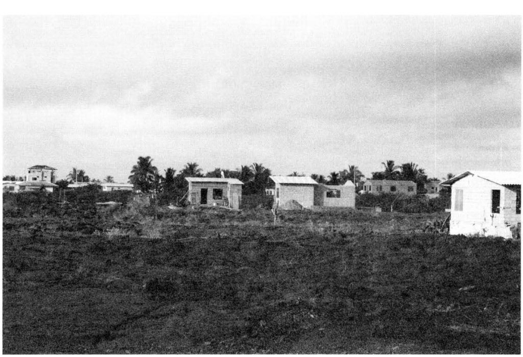 galapagos settlers