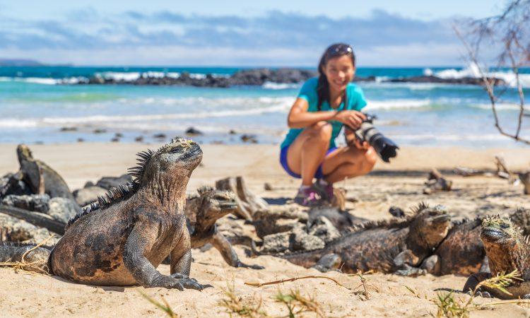 visit galapagos in winter